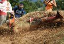 Course d'obstacle : la Pet'O'Cask (Vendée)