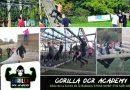 Gorilla OCR Academy